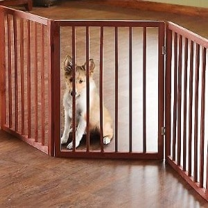Extra Tall Walk Through Dog Gate