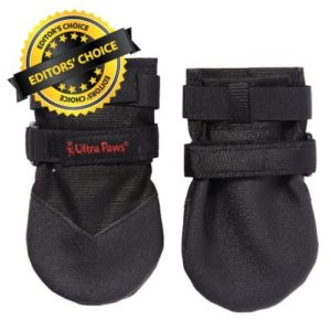 Pawz Dog Boots for Your Pet