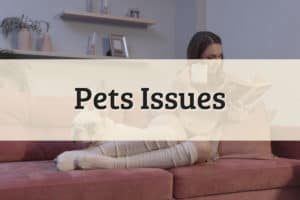 Pets Issues Featured Image