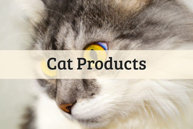 Cat Products Featured Image