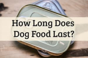 Does Dog Food Expire Feature Image